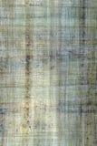 Blauwe papyrus Royalty-vrije Stock Afbeelding