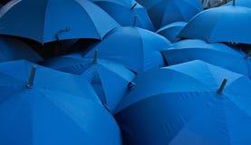 Blauwe paraplu's royalty-vrije stock foto