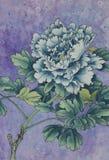 Blauwe pioen op een lilac achtergrond Royalty-vrije Stock Fotografie