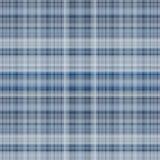 Blauwe plaid Vector Illustratie