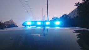 Blauwe politielichten die op patrouillewagen, noodsituatievoertuig, wetshandhaving opvlammen stock videobeelden