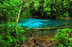 Blauwe Pool Stock Afbeelding