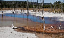 Blauwe pool in Yellowstone Royalty-vrije Stock Foto