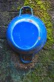 Blauwe Pot op de bemoste muur Royalty-vrije Stock Foto's