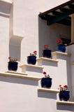 Blauwe Potten Stock Foto