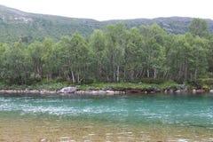 Blauwe rivier in Noorwegen Stock Foto's