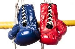 Blauwe & rode handschoenen Stock Foto