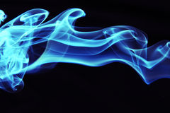 Blauwe rook royalty-vrije stock foto's