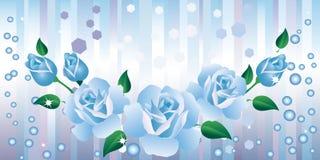 Blauwe rozen. Stock Fotografie