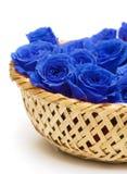 Blauwe rozen in mand Royalty-vrije Stock Foto's