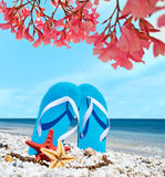 Blauwe sandals onder roze bloemen royalty-vrije stock foto's