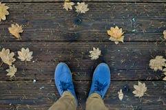 Blauwe schoenen en gevallen esdoornbladeren Royalty-vrije Stock Foto's