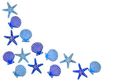 Blauwe shell grens Royalty-vrije Stock Foto