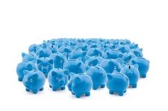 Blauwe Spaarvarkens Royalty-vrije Stock Foto's