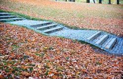 Blauwe stappen Stock Fotografie