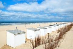 Blauwe strandhutten in Texel Stock Foto