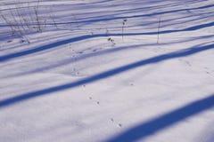 Blauwe strepen van schaduwen op de witte sneeuw Royalty-vrije Stock Fotografie