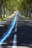 Blauwe strook van licht bij de landweg langs bomen Stock Afbeeldingen