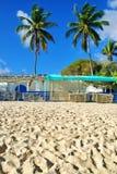 Blauwe Tarps op Caraïbisch Strand Royalty-vrije Stock Afbeelding
