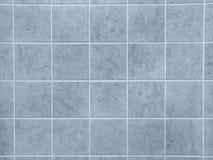 Blauwe Tegels Royalty-vrije Stock Fotografie