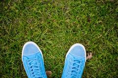 Blauwe Tennisschoenen Stock Foto