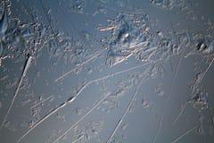 Blauwe textuur van ijs, bevroren water Royalty-vrije Stock Foto's