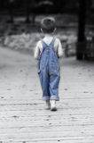 Blauwe Tint Royalty-vrije Stock Fotografie