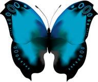Blauwe tropische vlinder met open vleugels Royalty-vrije Stock Foto's