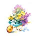 Blauwe Uitstekende Kruiwagen met van de de Zomertuin van de bloemenwaterverf Geschilderde de Illustratiehand Royalty-vrije Stock Foto's