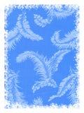 Blauwe veerachtergrond Stock Afbeelding