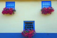 Blauwe vensters met de zomerbloemen royalty-vrije stock afbeelding
