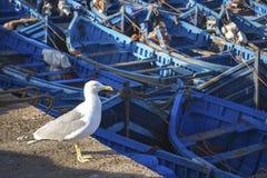 Blauwe Vissersboten Stock Afbeelding