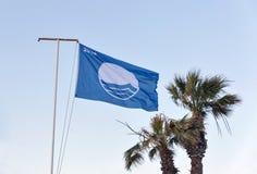 Blauwe vlag 2016 en palmen tegen duidelijke hemel Royalty-vrije Stock Foto's