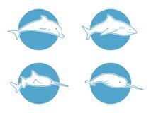 Blauwe vlakke embleemdolfijn voor bedrijf en zaken Stock Fotografie