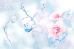 Blauwe vlinder in de sneeuw op roze rozen in een feetuin Artistiek Kerstmisbeeld royalty-vrije stock afbeelding