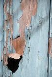 Blauwe vlokkige verf op een hout Stock Foto's