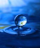 Blauwe waterdrop Stock Fotografie