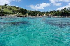 Blauwe wateren van Geiteiland Marine Reserve Het Gebied van Auckland stock afbeeldingen