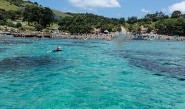 Blauwe wateren van Geiteiland Marine Reserve Het Gebied van Auckland stock afbeelding