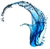 Blauwe waterplons Royalty-vrije Stock Foto's