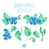 Blauwe waterverfbloemen Royalty-vrije Stock Afbeeldingen