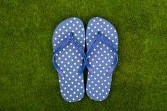 Blauwe wipschakelaars in stippen op de grasweide royalty-vrije stock fotografie