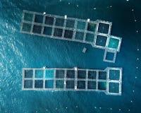 Blauwe Zeekreeftpotten royalty-vrije stock foto