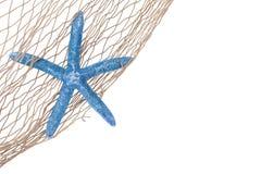 Blauwe zeester in een net Stock Foto's