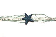 Blauwe zeester op een witte achtergrond Royalty-vrije Stock Afbeeldingen