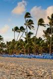 Blauwe zitkamers op een zandstrand Stock Foto's