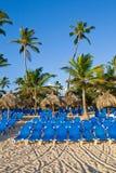 Blauwe zitkamers op zandstrand onder palmen Stock Foto's