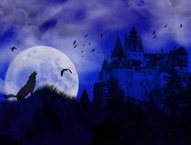 Blauwe zonsondergang op scarry plaats Stock Afbeelding