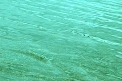 Blauwgroen Water dat zacht golft Royalty-vrije Stock Afbeeldingen