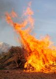 Blaze. Big pile of brush and debris on fire with huge firey blaze Stock Photography